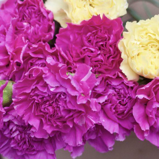 Floral-direkt